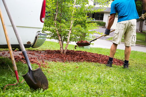How to Select a Trustworthy Landscaping Company